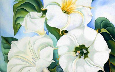 Flower Moon & the Art of the Flower Portrait